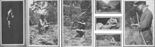 the-archers-archery-ebook-library-pics-9